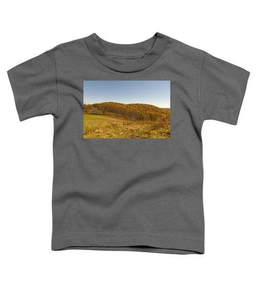 Rich Mountain Autumn Toddler T-Shirt