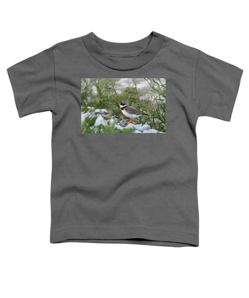 Ringed Plover On Rocky Shore Toddler T-Shirt