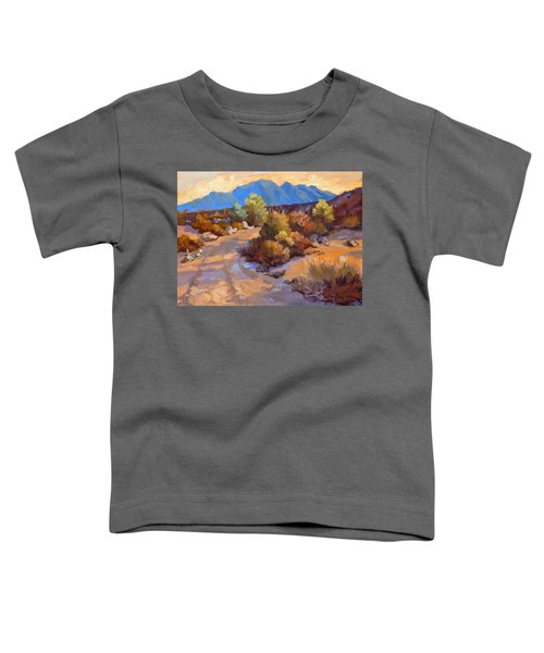 Rock Cairn At La Quinta Cove Toddler T-Shirt