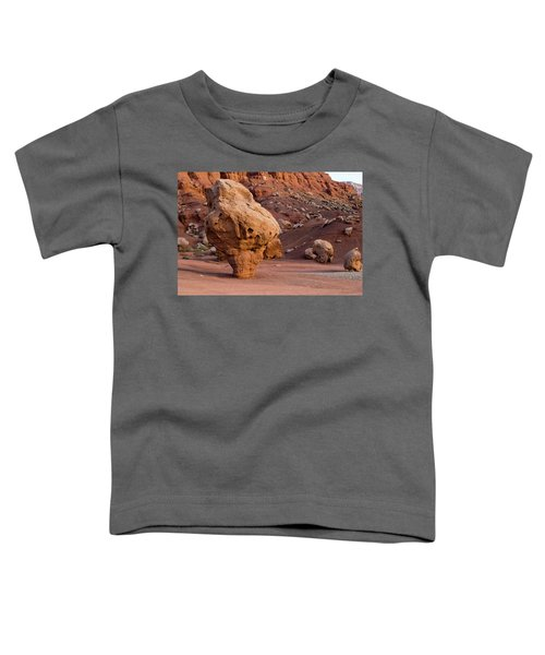 Rock Formations In A Desert, Vermilion Toddler T-Shirt