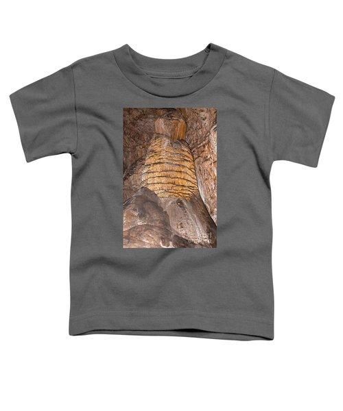 Rock Of Ages Carlsbad Caverns National Park Toddler T-Shirt