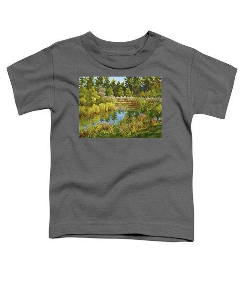 Rock Valley Pond Rockford Il Toddler T-Shirt