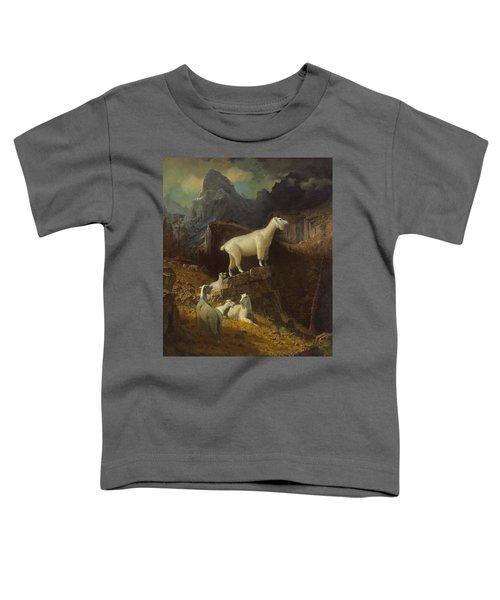 Rocky Mountain Goats Toddler T-Shirt by Albert Bierstadt