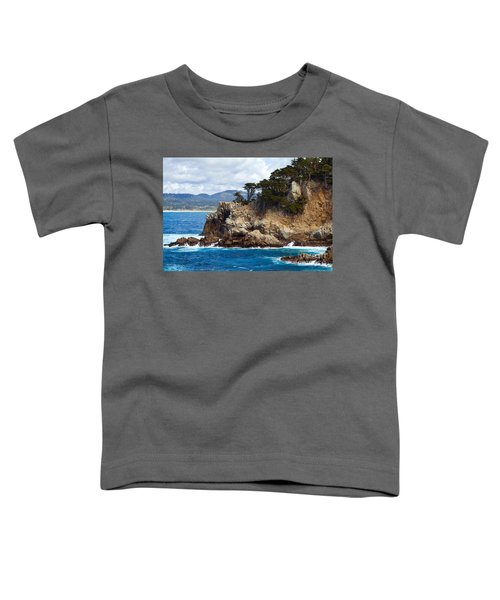 Rocky Outcropping At Point Lobos Toddler T-Shirt