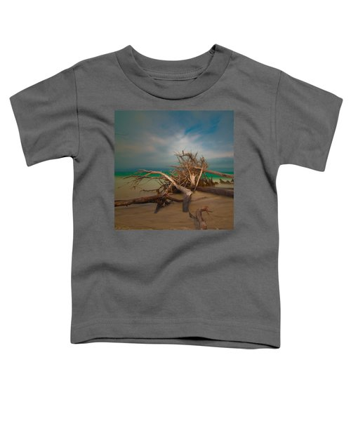Roots 4 Toddler T-Shirt