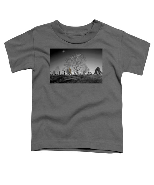 Roseville Cemetary Toddler T-Shirt