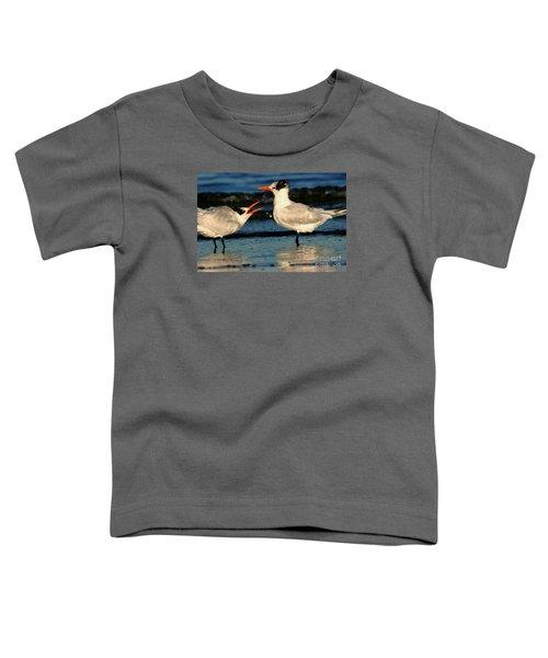 Royal Tern Courtship Dance Toddler T-Shirt
