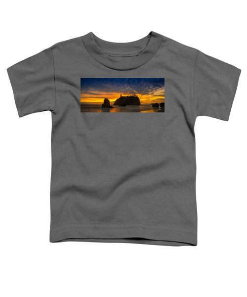 Ruby Beach Olympic National Park Toddler T-Shirt