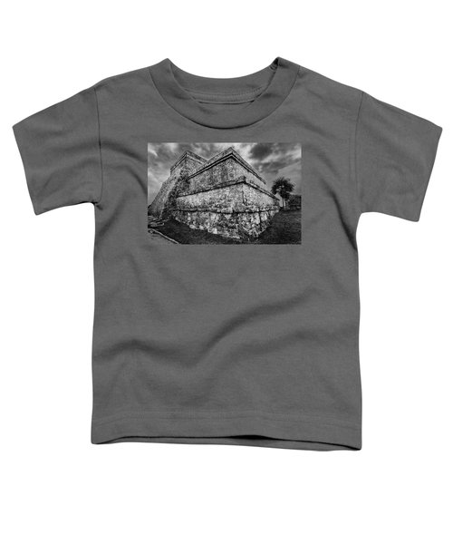 Ruin At Tulum Toddler T-Shirt