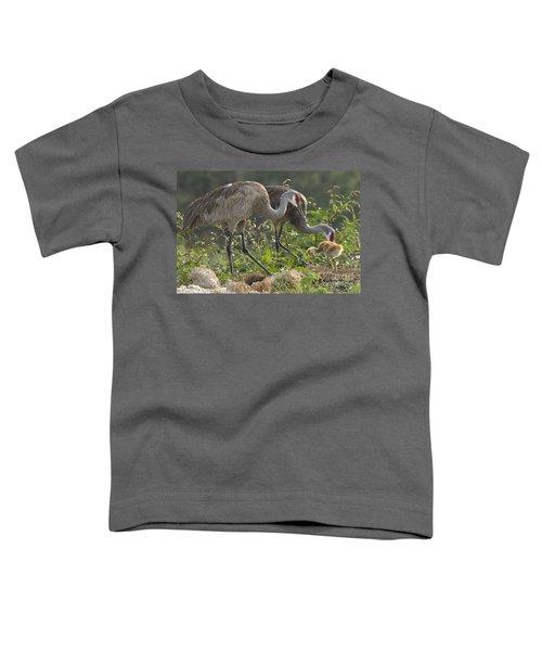 Sandhill Crane Family Toddler T-Shirt