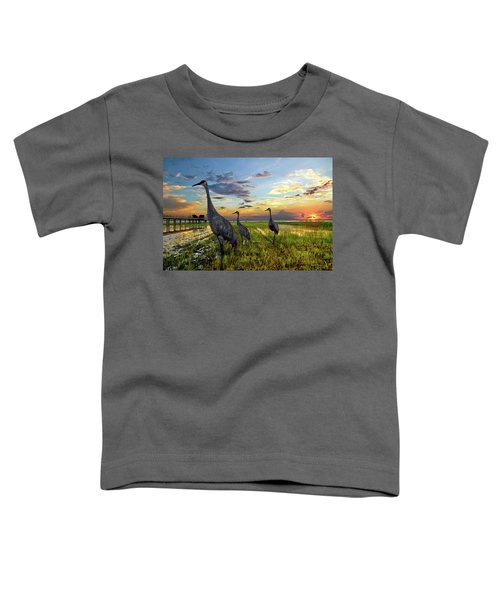 Sandhill Sunset Toddler T-Shirt