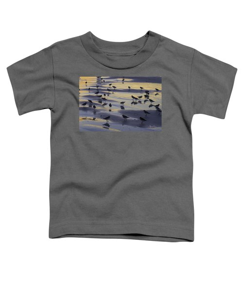 Sandpiper Sunset Convention Toddler T-Shirt