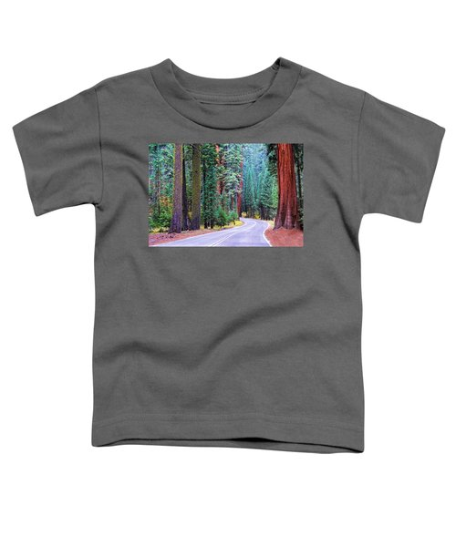 Sequoia Hwy Toddler T-Shirt