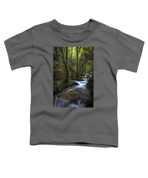 Sesin Stream Near Caaveiro Toddler T-Shirt
