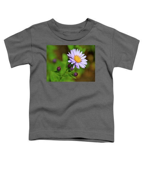 Showy Aster Toddler T-Shirt