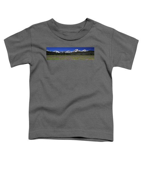 Showy Penstemon Wildflowers Sawtooth Mountains Toddler T-Shirt