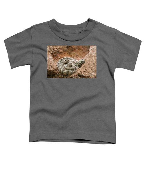 Sidewinder 2 Toddler T-Shirt