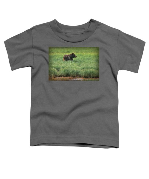 Sitka Grizzly Toddler T-Shirt