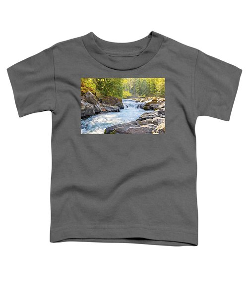 Skutz Falls At Cowichan River Provincial Park Toddler T-Shirt