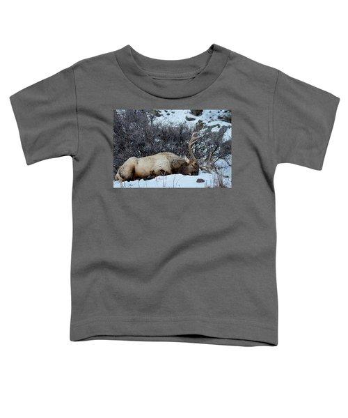 Sleeping Elk Toddler T-Shirt