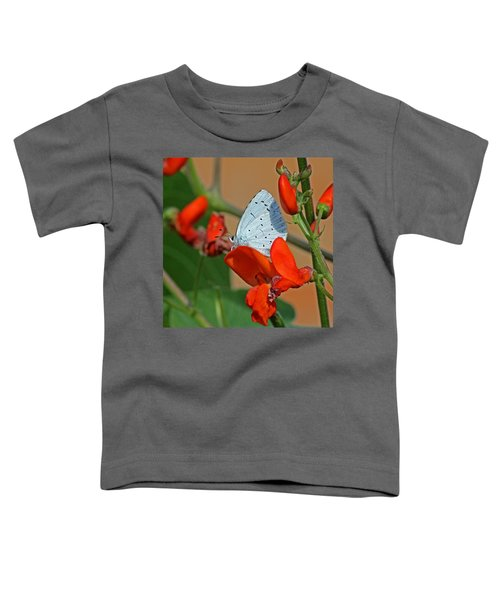 Small Blue Butterfly Toddler T-Shirt