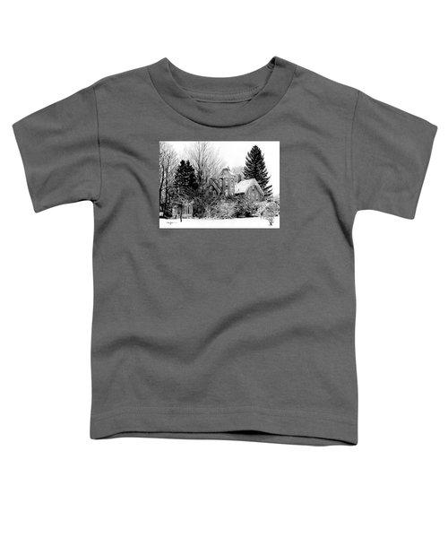 Da196 Snow House By Daniel Adams Toddler T-Shirt