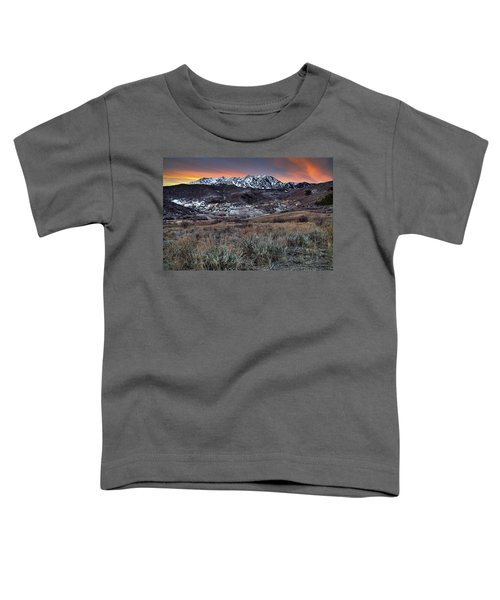 Snowbasin Fire And Ice Toddler T-Shirt