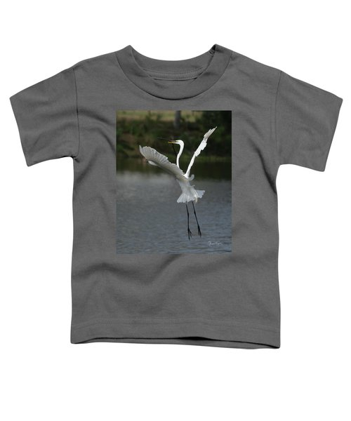 So You Think You Can Dance Toddler T-Shirt
