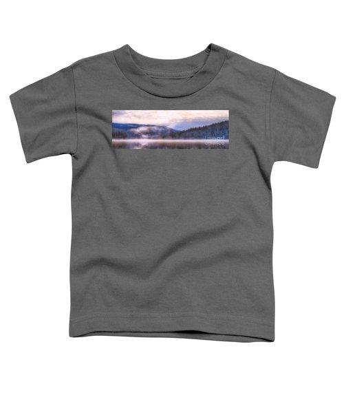Soft Light Of Winter Toddler T-Shirt