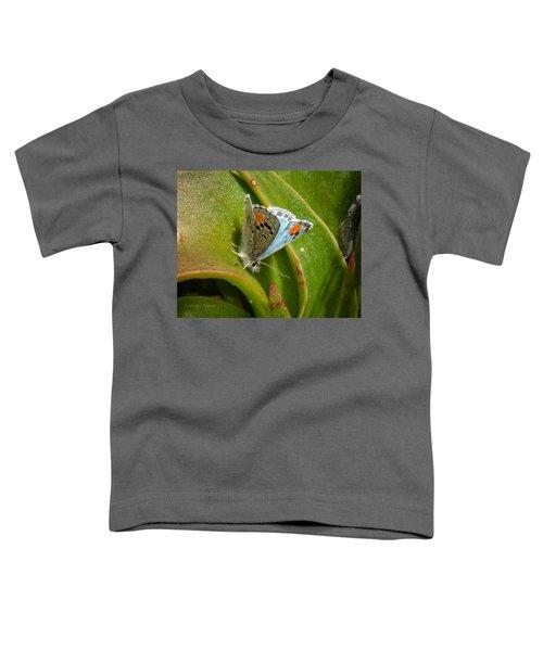 Sonoran Blue Toddler T-Shirt