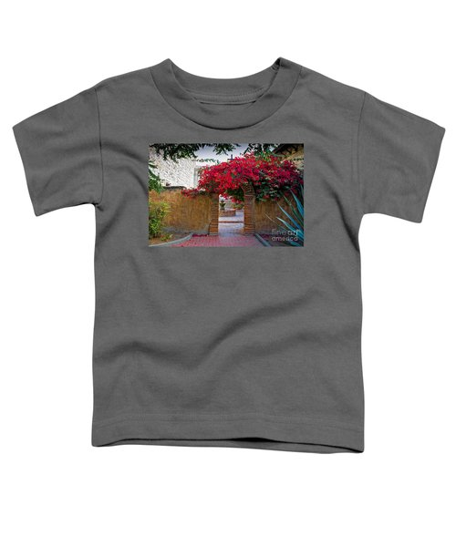 Spanish Mission Toddler T-Shirt