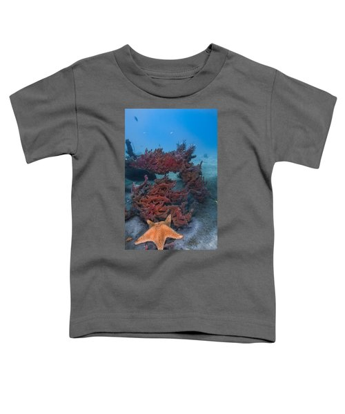 Sponges And A Star Toddler T-Shirt