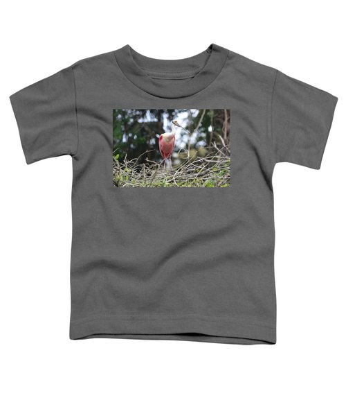 Spoonbill In The Branches Toddler T-Shirt by Carol Groenen