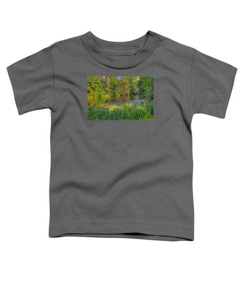 Spring Morning At Mount Auburn Cemetery Toddler T-Shirt