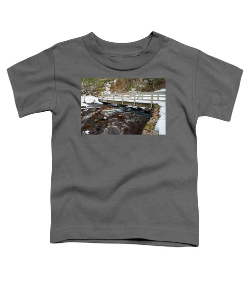 Spring Hike  Toddler T-Shirt