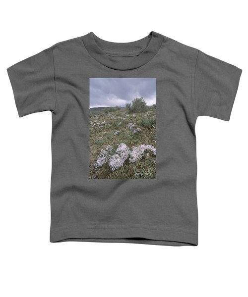 Springtime In The Idaho High Desert Toddler T-Shirt