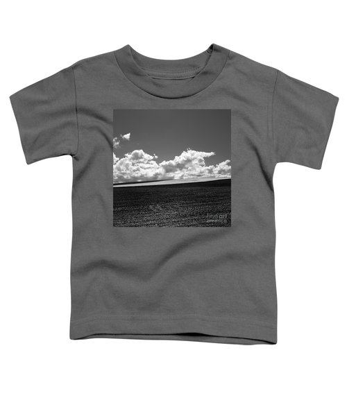 Sprouting Field Of Sunflowers And Field Of Rape At Back. Auvergne. France Toddler T-Shirt