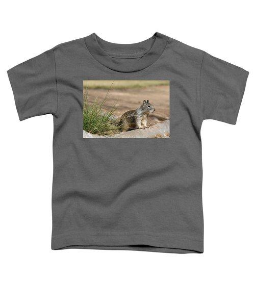 The Beggar  Toddler T-Shirt
