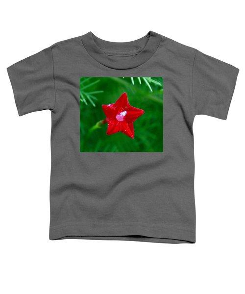 Star Glory Toddler T-Shirt