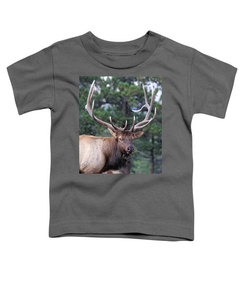 Stare Down Toddler T-Shirt