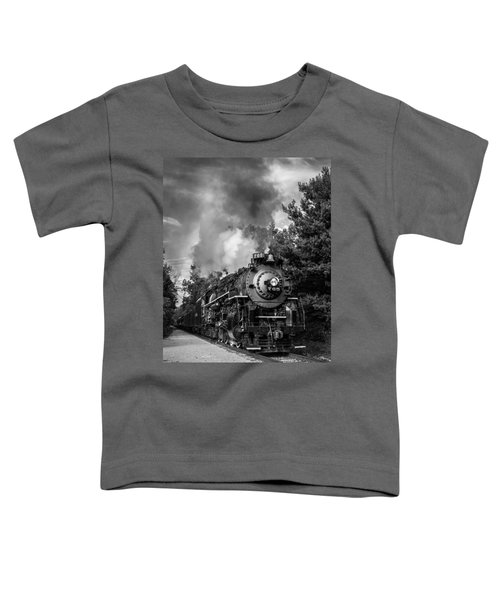 Steam On The Rails Toddler T-Shirt