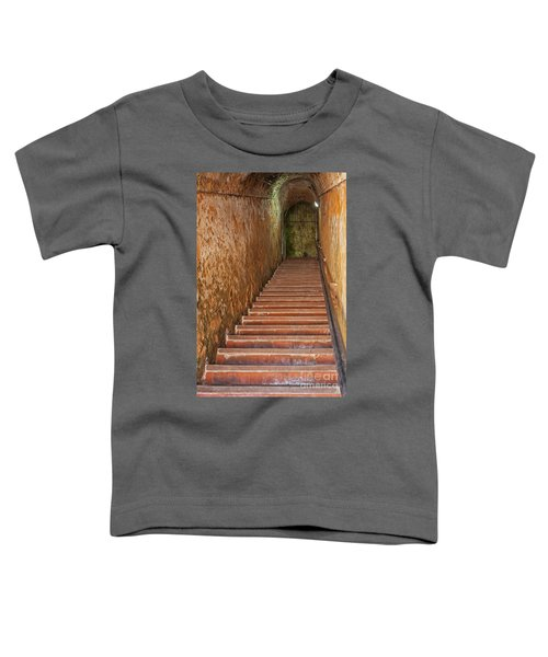 Steps And Staircase Toddler T-Shirt