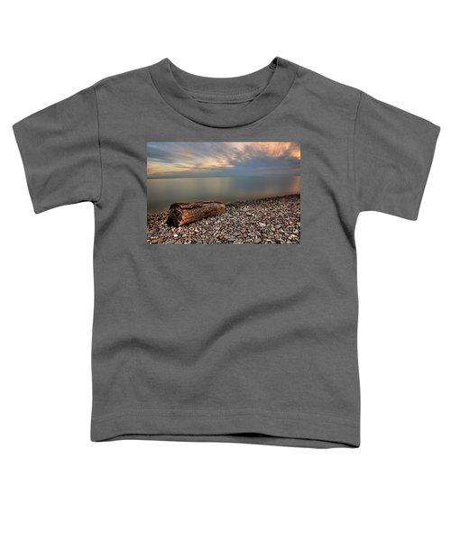Stone Beach Toddler T-Shirt by James Dean