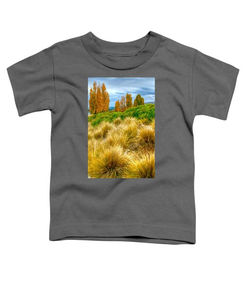 Storm Approaches Toddler T-Shirt