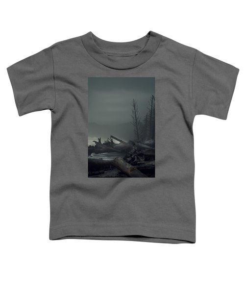 Storm Aftermath Toddler T-Shirt