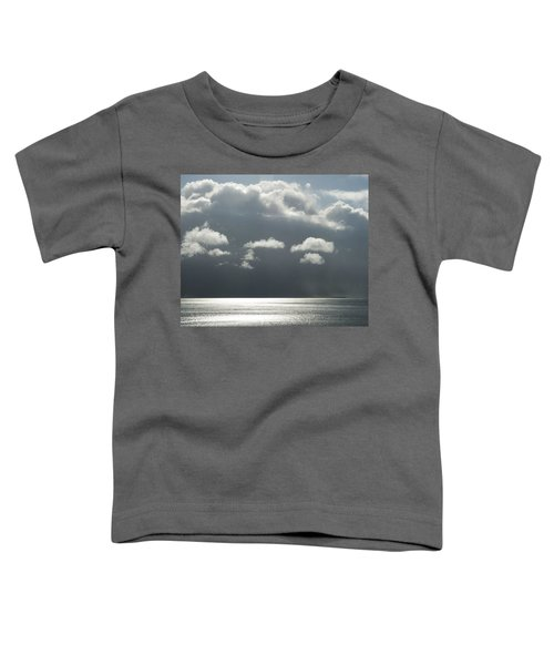 Storm Is Coming  Toddler T-Shirt