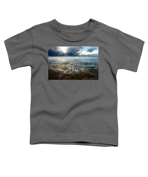 Storm Warning Toddler T-Shirt