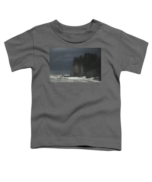 Storm At Lapush Washington State Toddler T-Shirt