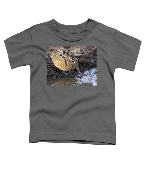 Streamside Woodcock Toddler T-Shirt