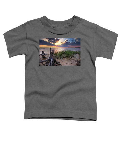 Stumps And Sunset On Oyster Bay Toddler T-Shirt